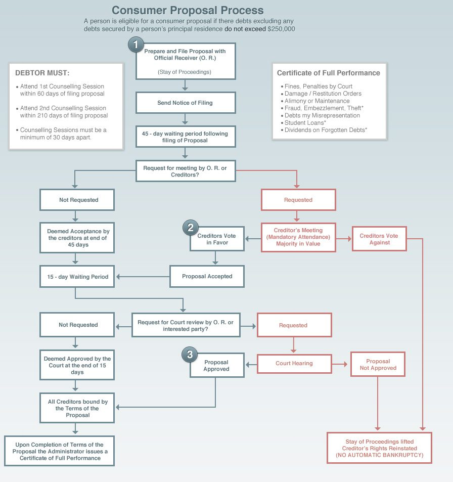 The Consumer Proposal Process